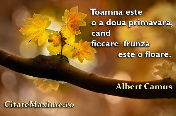 citate celebre despre toamna Toamna este o a doua primavara, cand fiecare frunza este o floare  citate celebre despre toamna