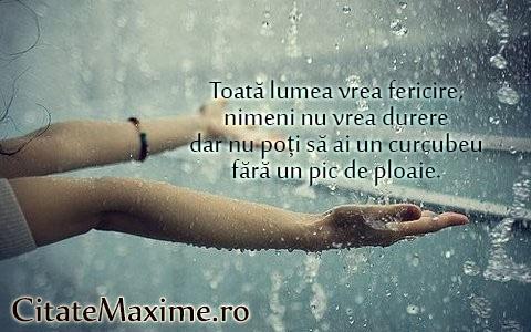 citate celebre despre ploaie Toată lumea vrea fericire, nimeni nu vrea durere dar nu poți să ai  citate celebre despre ploaie
