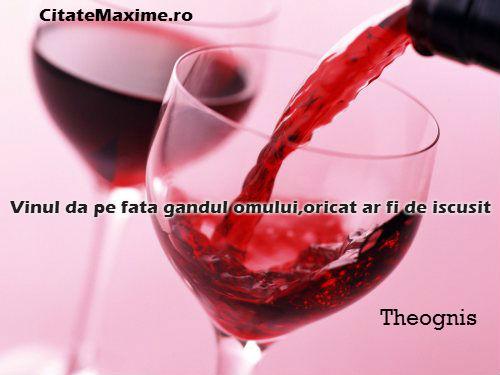 citate despre vin Vinul da pe fata gandului omului, oricat ar fi de iscusit – Citate  citate despre vin